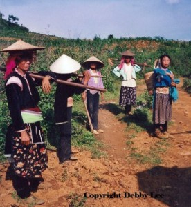 Vietman Women Fields 3