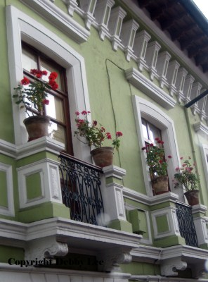 Quito Windows