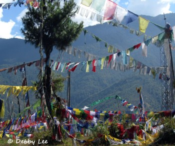 Prayer Flags Lungta Trees