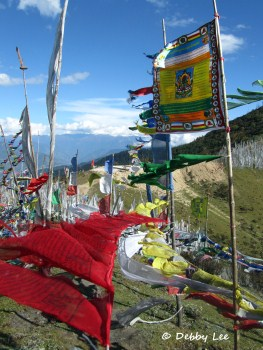 Bhutan Prayer Flags Wind