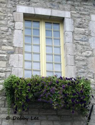 Quebec City Windows Doors 10