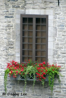 Quebec City Windows Doors 8