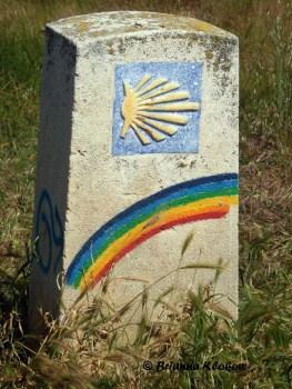 El Camino de Santaigo Shell and Rainbow