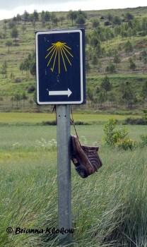 El Camino de Santiago Sign with Boot