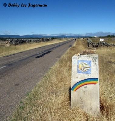 Scallop Shell Camino de Santiago