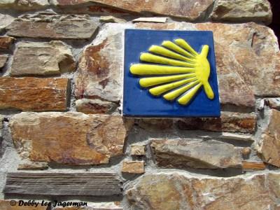 Camino de Santiago Scallop Shells Tiles
