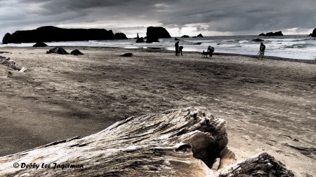 Coquille Point Beach - Oregon Coast
