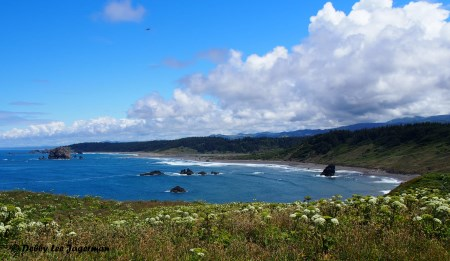 Beach near Cape Blanco Lighthouse - Oregon Coast