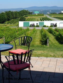 Vignoble Sainte Petronille Vineyards Ile d'Orleans