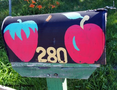 Ile d'Orleans Mailboxes Strawberries Apples