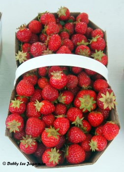 Strawberries Basket Ile d'Orleans