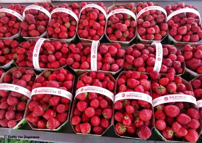 Strawberries Baskets Ile d'Orleans