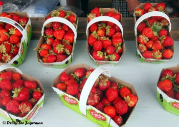 Strawberries Baskets Ile d'Orleans