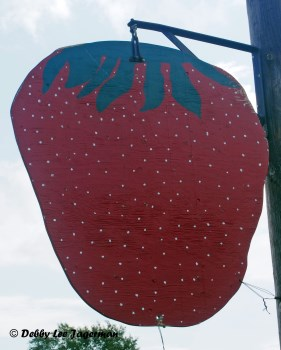 Strawberries Large Sign Ile d'Orleans