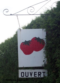 Strawberries Open Sign Ile d'Orleans