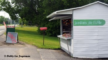 Strawberries Stand Ile d'Orleans