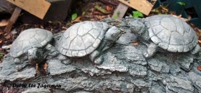 L'Art au Jardin Ile d'Orleans Turtles