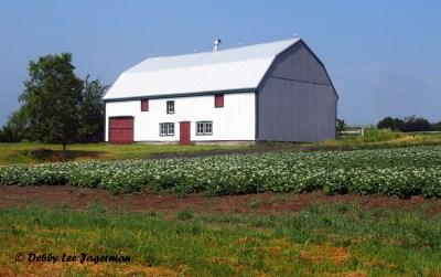 Ile d'Orleans Farm House