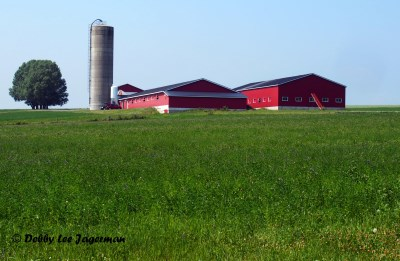 Ile d'Orleans Red Barn Farmland
