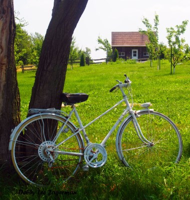 Ile d'Orleans Bicycle