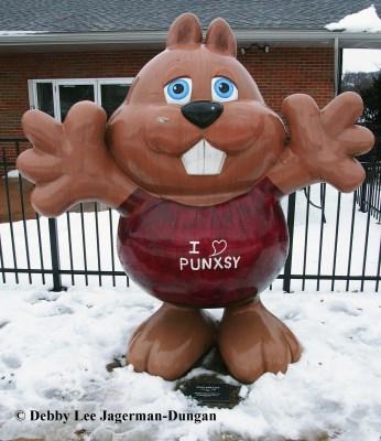 Punxsutawney Phil Groundhogs Day