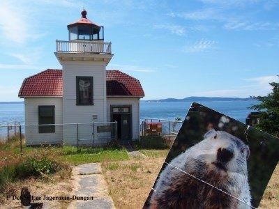 Burrow's Island Lighthouse