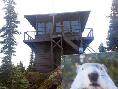 Gobblers Knob Fire Lookout Mt Rainier