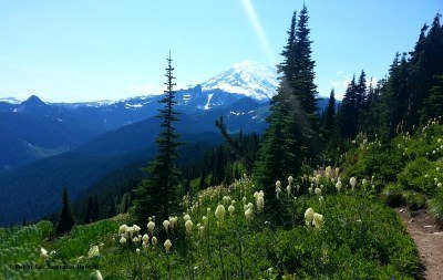 Mt Rainier Naches Peak Loop