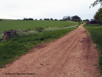Cotswolds Dirt Road