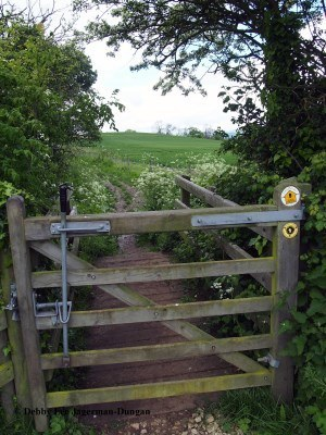 Cotswolds Gate Metal Handle