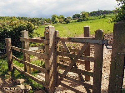 Cotswolds Kissing Gate Field