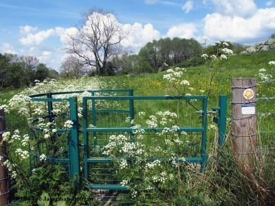 Cotswolds Kissing Gate Green
