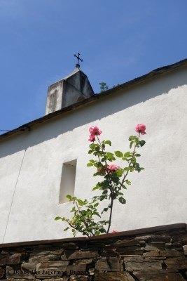 Camino de Santiago Churches with Flowers