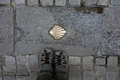 Camino de Santiago Tevas Scallop Shell