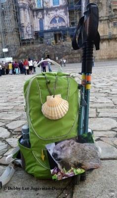 Camino de Santiago Punxsutawney Phil Cathedral de Santiago