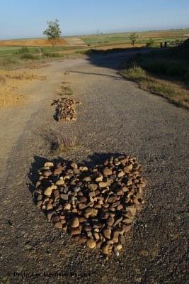 Camino de Santiago Directional Symbols