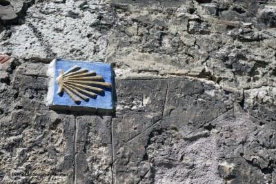 Camino de Santiago Scallop Shells Yellow Arrows