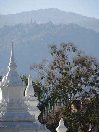 View from Wat Suandok