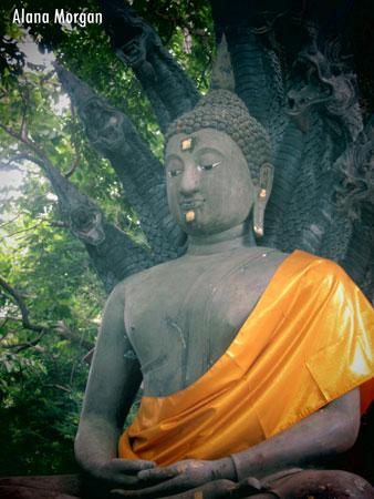 Buddha in Chiang Rai