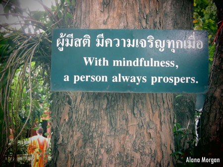 Mindfulness Prospers