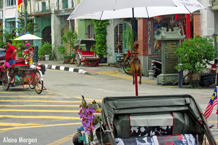 Decorated Bicycle Taxi in Penang