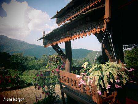 Chiang Mai Botanical Gardens. Thailand