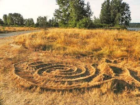 Smoke Farm, LoFi Arts Festival, Braided Grass, Site Specific Art