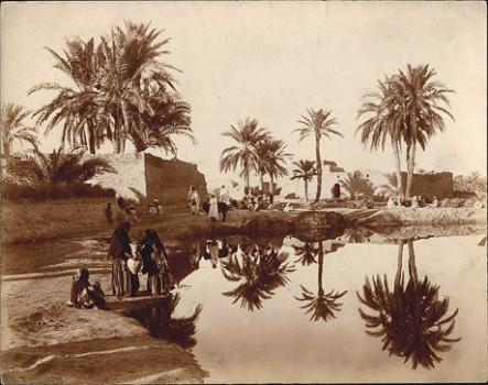 Scene of Touggourt, Algeria