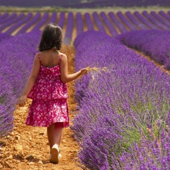 Girl Provence