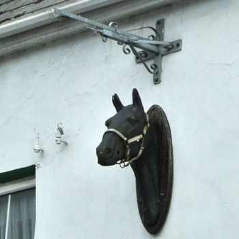Horse in Dingle Ireland