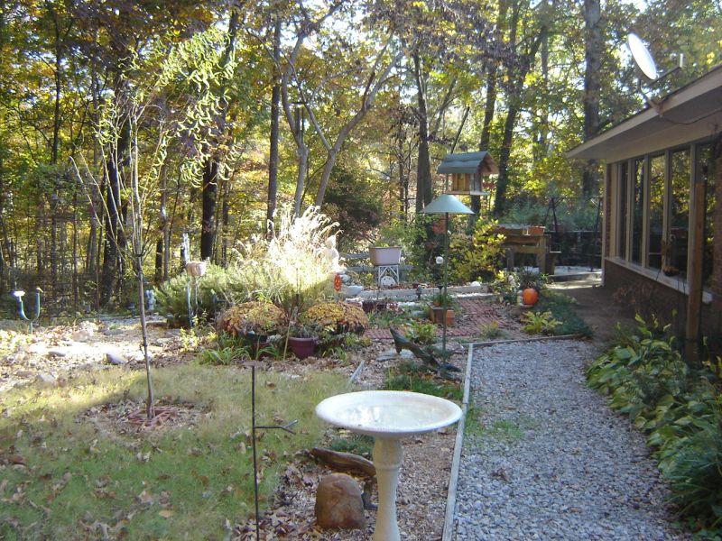 A Beautiful Backyard Paradise Hammock In Paradise Life