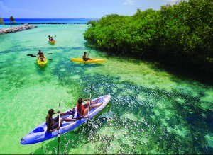 Kayaking Aruba's Renassance Island at Marriot Resorts