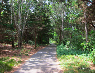 Cape Cod Biking Trails