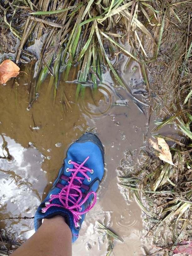 Merrell Verterra Shoe Mid-Waterproof